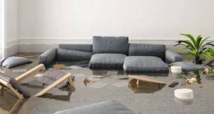ЧП в квартире. Что делать, если вас затопили